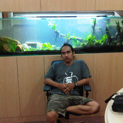 didi-aquarium-design