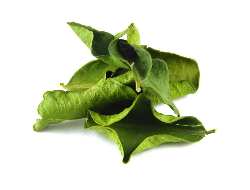lime-leaves-kaffir-1
